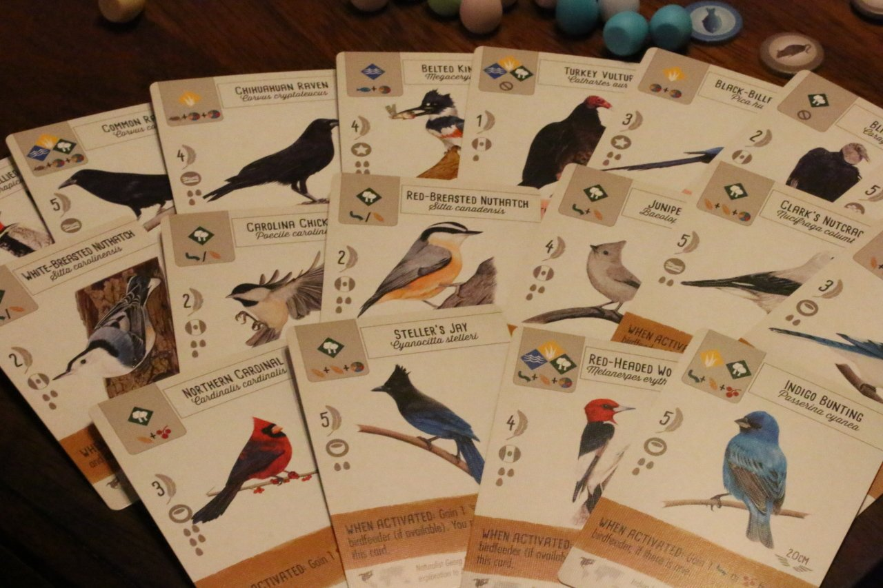the cards of Wingspan are covered in interesting bird facts